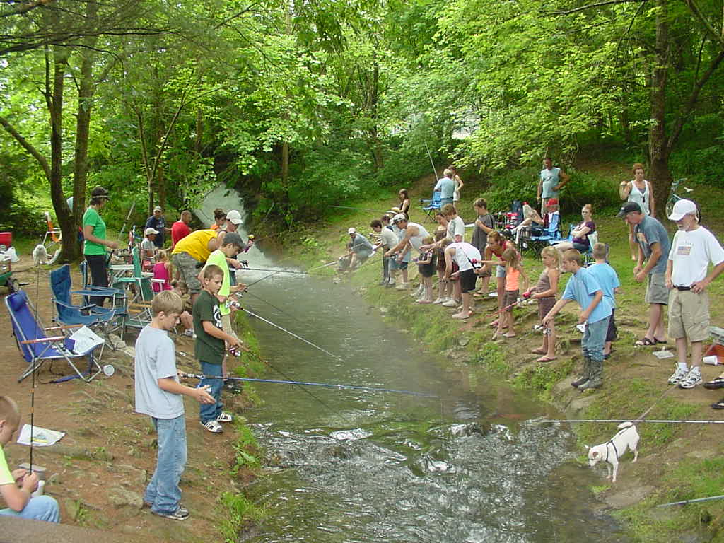 fishing in creek
